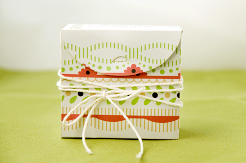 Christmas Candy Box 2009 3